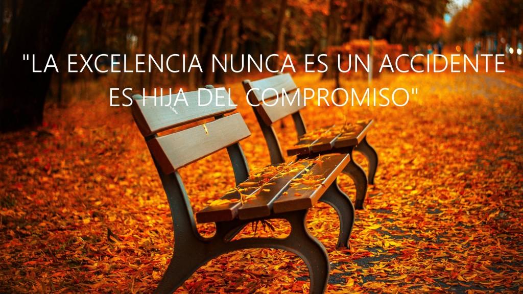 autumn_bench-HDrr